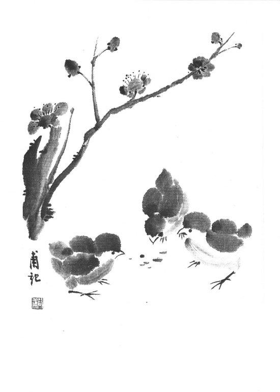 Obr.1 - Kuřátka pod slivoní